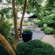 Onderhoudsvrije tuin